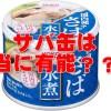 サバ缶はダイエット、筋トレの強い味方!気になるカロリー・タンパク質・脂質はどれくらい?