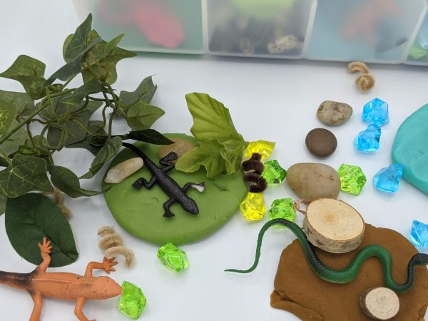 Reptiles Kit -Alligators and Snakes