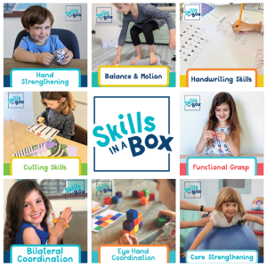 Skills in a Box Subscription