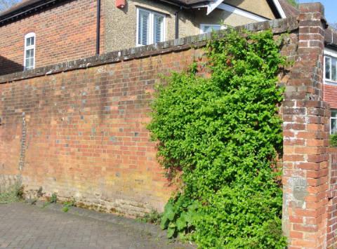 Highfield House Garden Wall