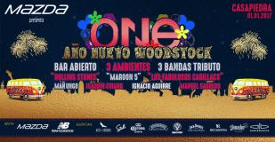 ano-nuevo-one-1