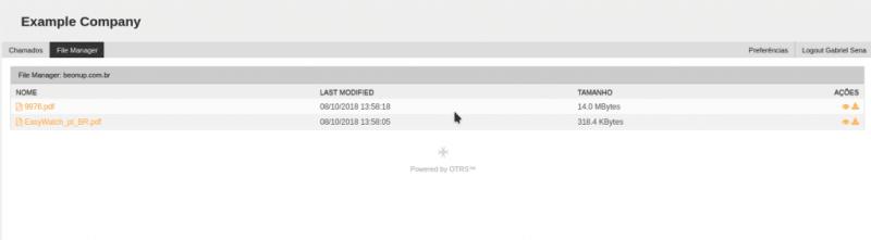 Módulo Field Manager: Interface usuário cliente