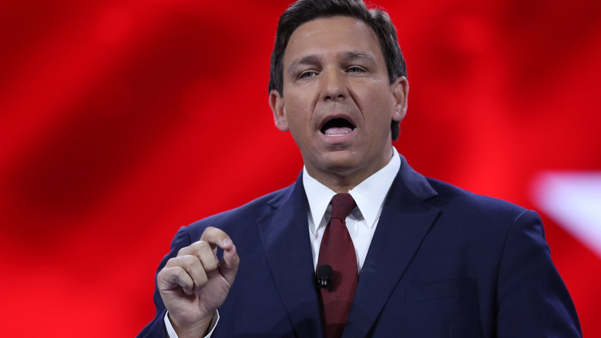 DeSantis Signature Problem Shows Florida's 'Over-Regulated the Right to Vote,' State's Top Democrat Says