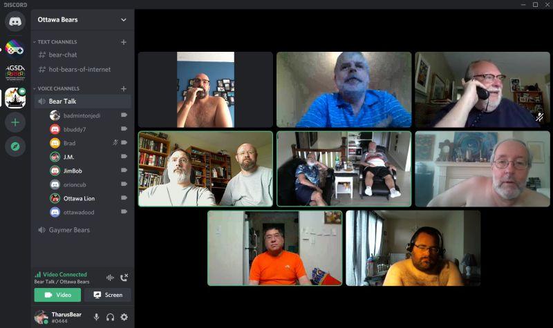 Cyber Bear Video Chat
