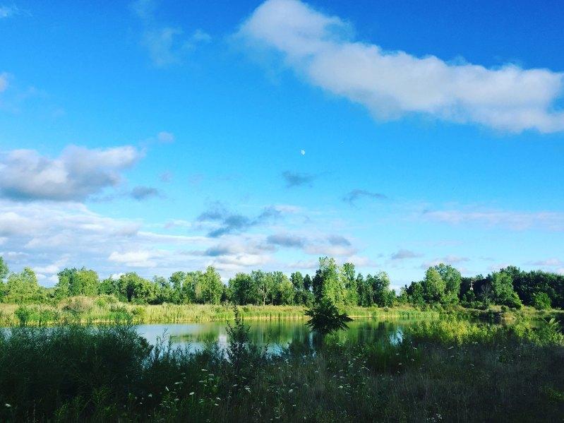 grand-river-open-space