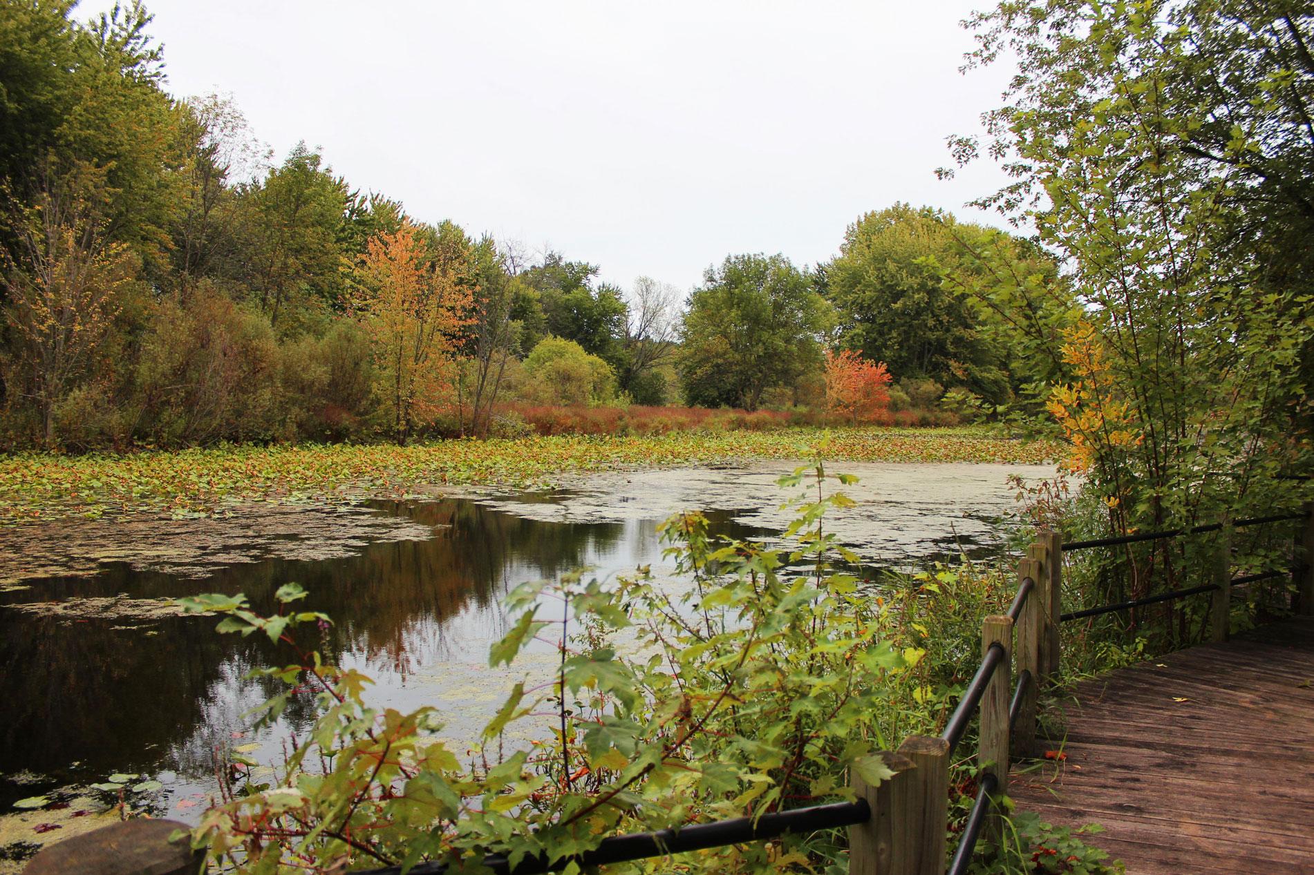 riverside-park-grand-river