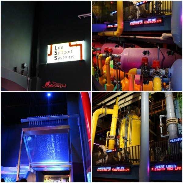 Ripley's Aquarium- Life Support System