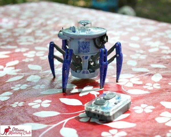 Ottawa Mommy Club HEXBUG Spider Photo