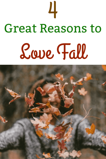 4 Great Reasons to Love Fall