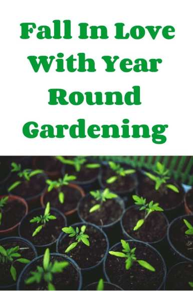 Fall In Love With Year Round Gardening