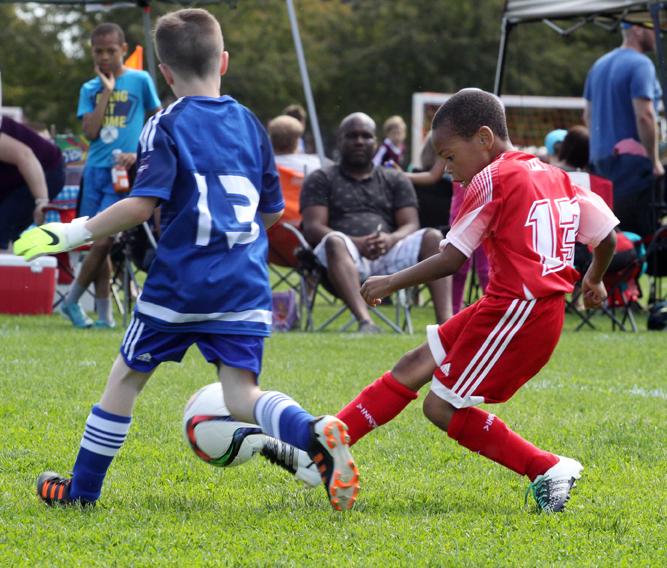 soccer-hotspursmullings
