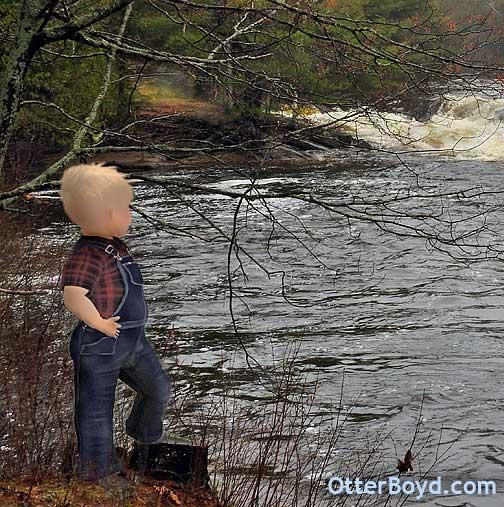 Springtime River Rapids