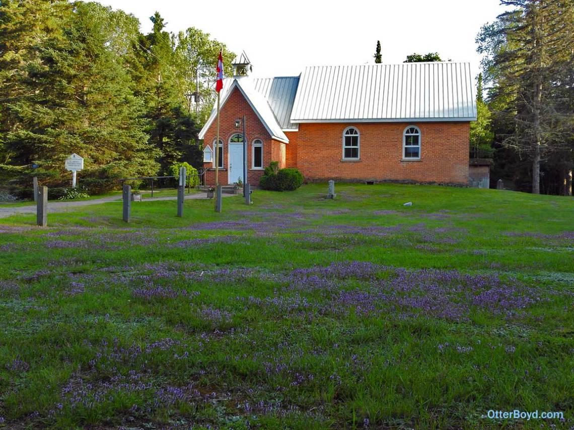 thyme flowering in old Muskoka church yard