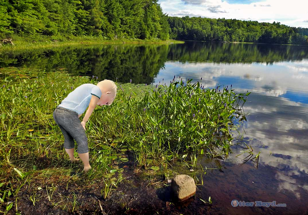 Otter Boyd boy wading in marsh at edge of lake looking for frogs