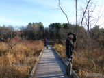 Searching for birds on the OVP boardwalk