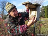 Checking a nest box