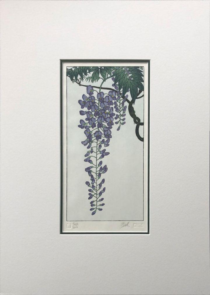 Flowering Wisteria after Koson woodblock print