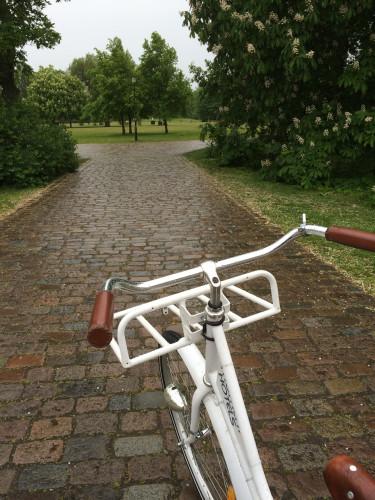 42-Cykelbud