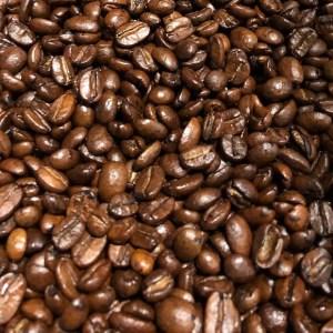 Otto's Granary Pumpkin Muffin Coffee Beans