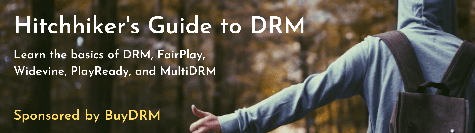 hitchhiker-guide-to-drm-ad