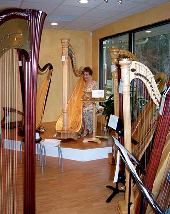 Susan teaches a Blues Workshop at the Atlanta Harp Center in Alpharetta 2/17/08