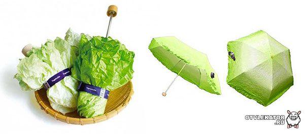 Зонтик-капуста