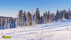 turbacz-rakiety-sniezne-2017-otwarty-horyzont-44