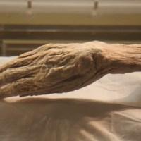 Lady Dai: la mummia cinese morta 2.100 anni fa conservata come se fosse morta ieri