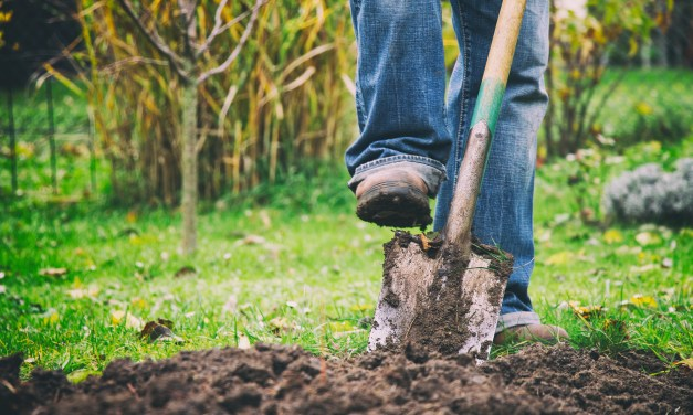 Know What's Below: Call 811 Before You Dig