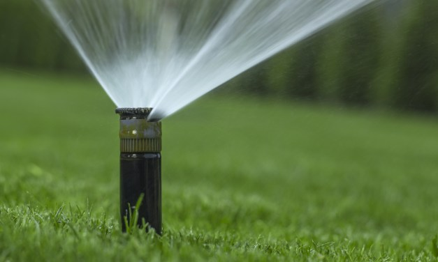 It's Time to Water Lawns Efficiently