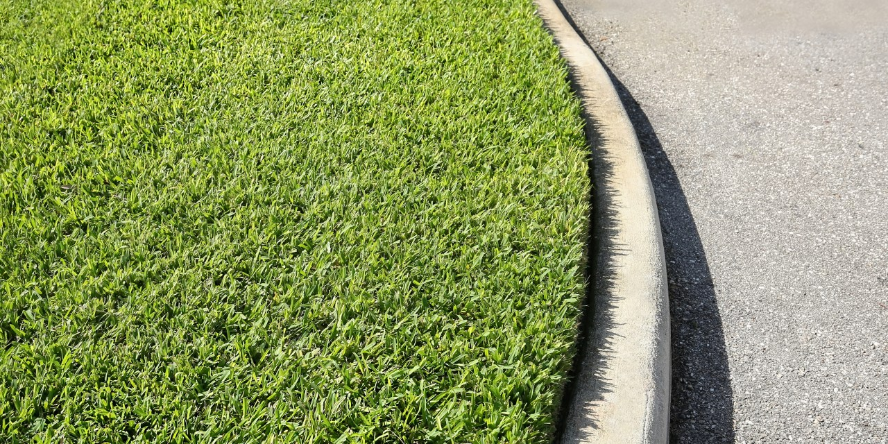 HOW TO SAVE WATER ON TURFGRASS CARE