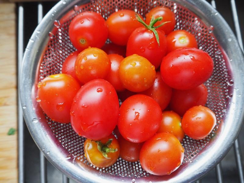 採れたてのミニトマト