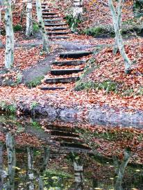 Reflections... more stairs... more gratitude...