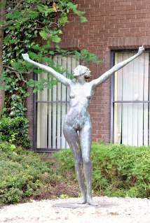 Well... what do I say... go girl, GO!! Show off all your glory... even if you remain anonymous... (Sandymount beauty... in all her glory!!)