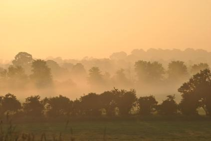 DtFBs PF - Misty July 2013 morning summer sunrise, Co Kildare, Ireland