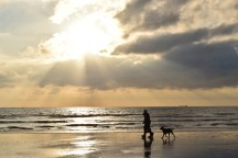 Stroll on Bull Island beach... Dublin, Ireland... https://www.facebook.com/136168046462621/photos/a.767401600005926.1073741863.136168046462621/770893006323452/?type=1&theater