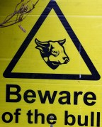 Read the sign!! Don't let the bull get you down!!!