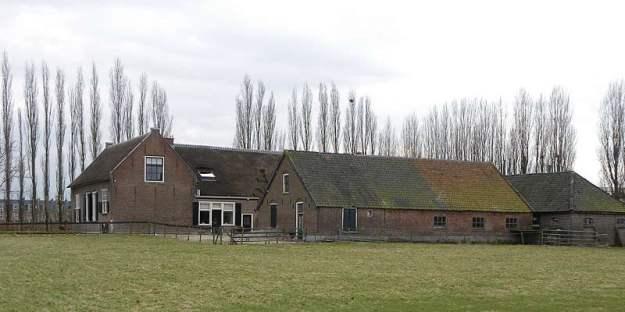 Schoneveld