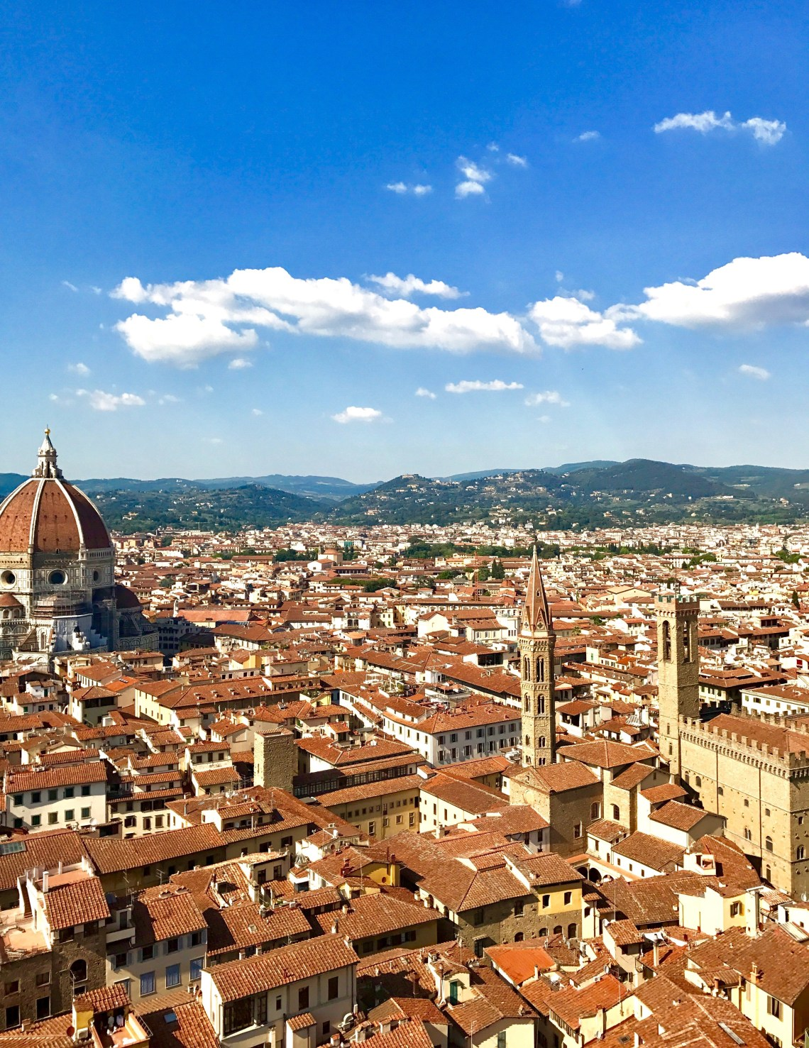View of Florence's Duomo from the tower