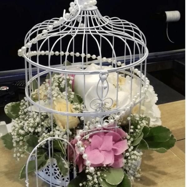 cage à oiseaux location