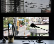 greg-window