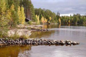 Järven ranta, kivikkoinen suiste