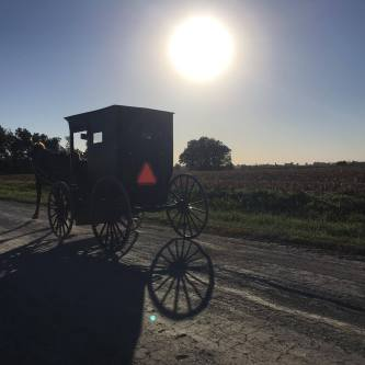 The Amish usually refrain from political participation. Iowan Amish say they will not be voting this election, despite Amish in Ohio and Pennsylvania saying they will.