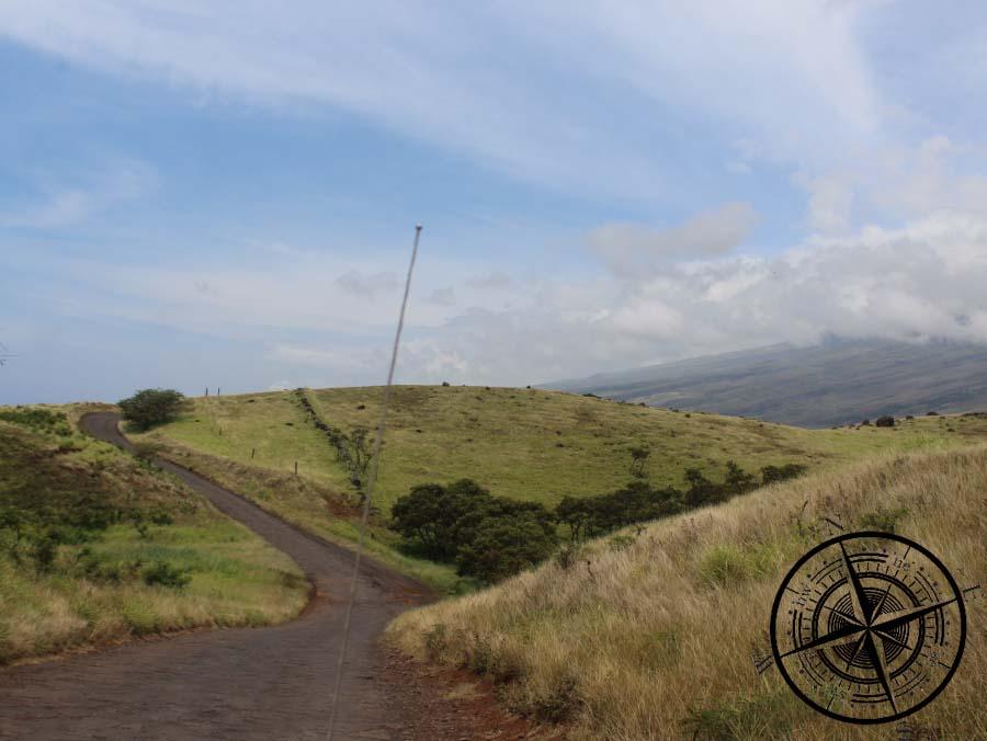 Hier gab es viele weite Flächen mit Vulkangestein...