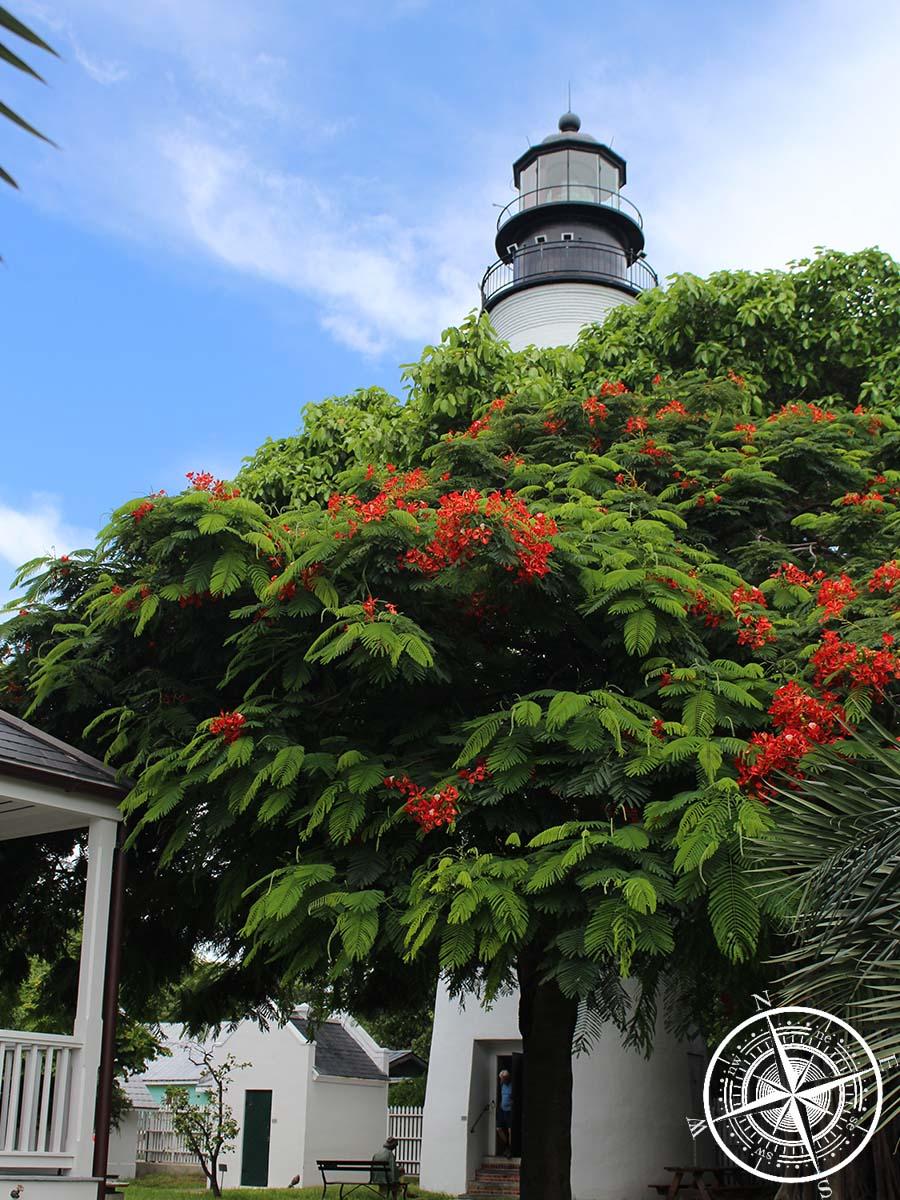 Der Leuchtturm in Key West