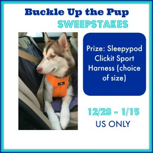 Buckle Up the Pup Sweepstakes