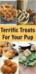 25 Terrific Treats To Reward Your Pup