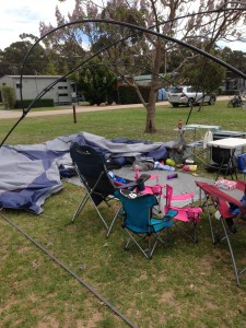 Our site after the wind!