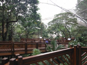 Hong Kong Park Bird Aviary
