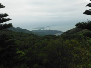 View from the top of the Big Buddha